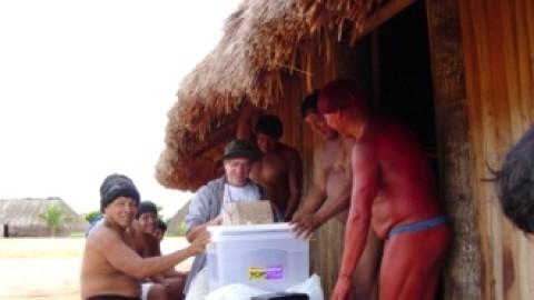 Inspiração sustentável que vem das habitações indígenas