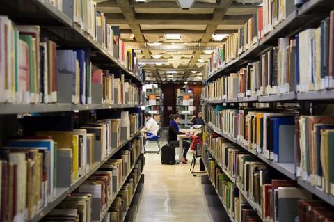 Quatro cidades concentram metade das vagas em cursos de AU no Estado de SP