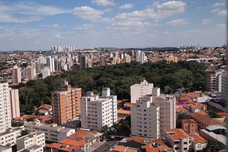 Vista aérea do Bosque dos Jequitibás em Campinas. Imagem: Leandro R. M. de Marco/Wikimedia Commons